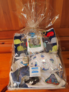 Unisex gift wrapped basket
